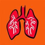 Absorción de tóxicos por los pulmones