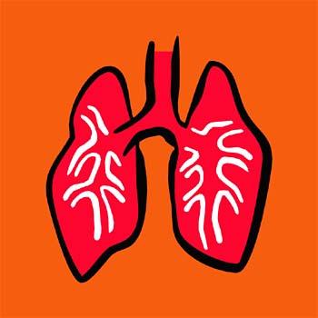 Toxicos pulmones