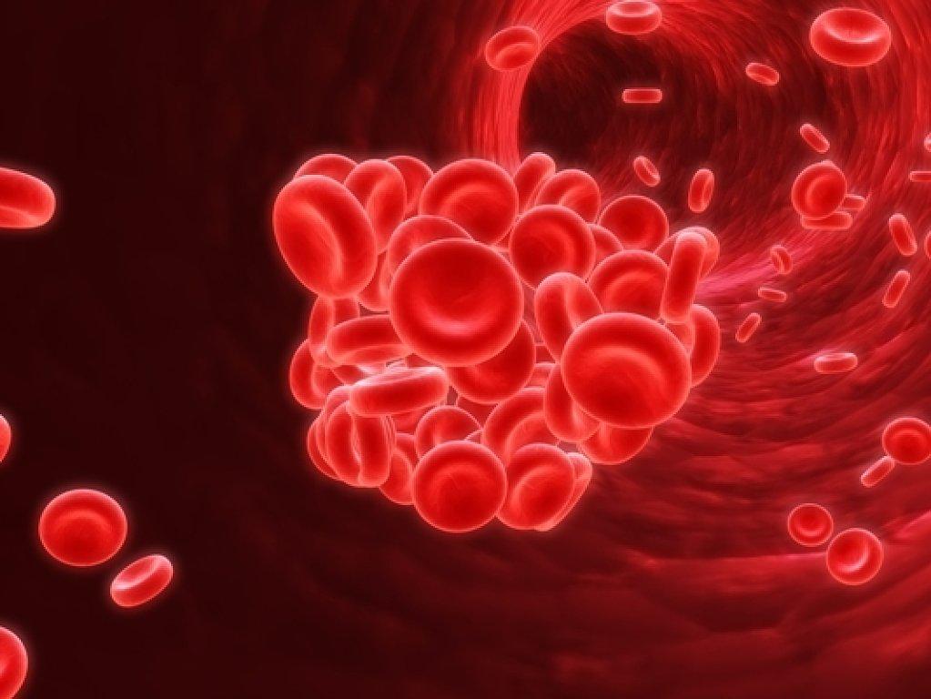 La anemia y sus causas