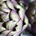 Beneficios de consumir alcachofa o alcaucil